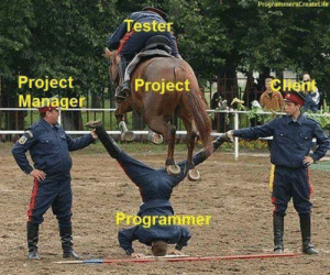 ProgrammersCreateLife Tester Chent Project Manager Project