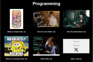 Friends, Work, and Programming: Programming  moua  Cress  What the media thinks I do  What my mom thinks I do  What my friends think I do  ABSOLUTELY  LoG IN  Fruttos cck  LOGIN  NOTHING  www.stuttorstock.com $7130012  What I really do  What my co-workers think I do  What I think I do When you debate function/variable naming at work