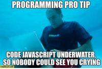 Crying, Pro, and Programming: PROGRAMMING PRO TIP  CODE JAVASCRIPT UNDERWATER  SO NOBODY COULD SEE YOU CRYING  STARECAT.COM Now Im crying