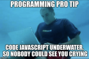 Be a pro: PROGRAMMING PRO TIP  CODE JAVASCRIPT UNDERWATER,  SO NOBODY COULD SEE YOU CRYING  imgf p.com Be a pro