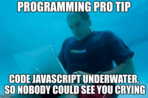 WTF.js: PROGRAMMING PRO TIP  CODE JAVASCRIPT UNDERWATER,  SONOBODY COULD SEE YOU CRYING  imgfip.com WTF.js