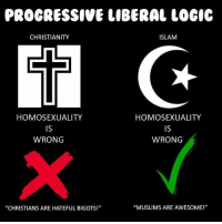 "Logic, Memes, and Progressive: PROGRESSIVE LIBERAL LOGIC  CHRISTIANITY  ISLAM  (Q  HOMOSEXUALITY  IS  WRONG  HOMOSEXUALITY  IS  WRONG  ""CHRISTIANS ARE HATEFUL BIGOTS!""  ""MUSLIMS ARE AWESOME!"" (GC)"