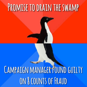 Fraud, Manager, and Oops: PROMISE TO DRAIN THE SWAM  CAMPAIGN MANAGER FOUND GUILTY  ON B COUNTS OF FRAUD Oops