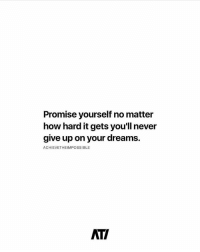 Memes, Dreams, and Never: Promise yourself no matter  how hard it gets you'll never  give up on your dreams.  ACHIEVETHEIMPOSSIBLE  ATI Never gice up!!.. Follow: @achievetheimpossible thefutureentrepreneur