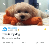 "Dog, Via, and Name: PROMOTED  u/t1234411  This is my dog  His name is marley  ↑ 15.6k  0  Share <p>Someone paid for this ad and its great. via /r/wholesomememes <a href=""https://ift.tt/2jYab8L"">https://ift.tt/2jYab8L</a></p>"