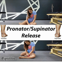 "Head, Love, and Memes: Pronator/Supinator  Release  Pronated  Supinated  @ quaddoc THESE MUSCLES CAN AFFECT YOUR GAIT Tonight we're addressing two muscles that can affect your gait.🏃‍♂️ If you overpronate or oversupinate, check these guys out and listen to @quaddoc's instructions below. . Posterior tibialis inverts and helps to raise the arch in the foot. That inversion can play into supination, hence rolling to the outside. While the peroneals help to evert the foot, which will play into more pronation. . So...pronators = release the peroneals while supinators = release the tib posterior.🔴 . Some things to keep in mind as you go through these releases: . 👣Supinators - find posterior tib by feeling the inside portion of the knee, move down the shin bone, and roll off into a fleshy portion of the inner calve. Place the ball here and slowly press down using your hands and roll down towards the ankle. . 👣Pronators - go to the outer portion of the knee, feel for a bony part (head of the fibula), place the ball on the ground, and then lightly set your outter calve on the ball below the fibula. Start to press your leg down using your hands and roll down towards the ankle. . Roll the tender spots for about ⏱ 30 seconds to 1 minute then move on. Work to your tolerance!! . Got a 🙋‍♂️ friend who needs to fix their feet? Tag them and show them some 😙 love. . 🎵Dr. Dre-""The Next Episode"" (San Holo Remix) . MyodetoxOrlando Myodetox"