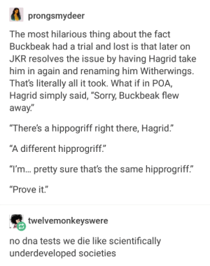 """Buckbeak, Sorry, and Lost: prongsmydeer  The most hilarious thing about the fact  Buckbeak had a trial and lost is that later orn  JKR resolves the issue by having Hagrid take  him in again and renaming him Witherwings.  That's literally all it took. What if in POA,  Hagrid simply said, """"Sorry, Buckbeak flew  away.  There's a hippogriff right there, Hagrid.""""  different hipprogriff""""  """"I'm... pretty sure that's the same hipprogriff.""""  """"Prove it.""""  twelvemonkeyswere  no dna tests we die like scientifically  underdeveloped societies Most wizards havent an ounce of common sense [VERY LONG]"""