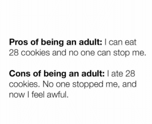 Being an Adult, Cookies, and Irl: Pros of being an adult: I can eat  28 cookies and no one can stop me.  Cons of being an adult: I ate 28  cookies. No one stopped me, and  now l feel awful me irl