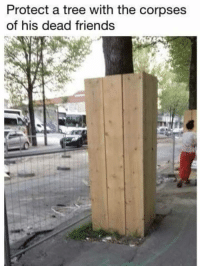 """Friends, Memes, and Tree: Protect a tree with the corpses  of his dead friends <p>That&rsquo;s pretty dark&hellip; via /r/memes <a href=""""https://ift.tt/2jeHUu6"""">https://ift.tt/2jeHUu6</a></p>"""