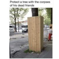 Follow @memezar for some of the funniest memes 😂: Protect a tree with the corpses  of his dead friends Follow @memezar for some of the funniest memes 😂