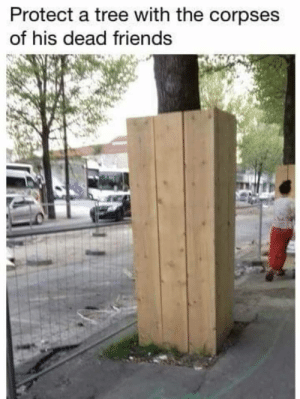 Friends, Tree, and Knock: Protect a tree with the corpses  of his dead friends Knock on Wood