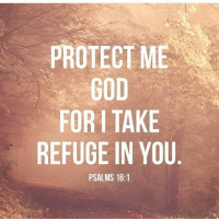 Blessed, Friends, and God: PROTECT ME  GOD  FOR TAKE  REFUGE IN YOU  PSALMS 16:1 👉🏻 follow @praisejesus1st 👈🏻 🙌🏻All Glory to the King of KINGs 📢AMEN 🙏🏻 ( 👉🏻Share with you friends 👈🏻) God Jesus HolySpirit Jehova Lord Christ Bless memes sunday Somebody churchmemes memehistory Life Love My Yes Blessed instagood Bible GodBlessYou me Amazing mercy tbt You I live