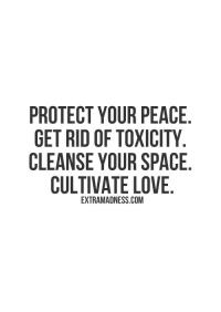 Cleanse: PROTECT YOUR PEACE  GET RID OF TOXICITY  CLEANSE YOUR SPACE  CULTIVATE LOVE  EXTRAMADNESS.COM