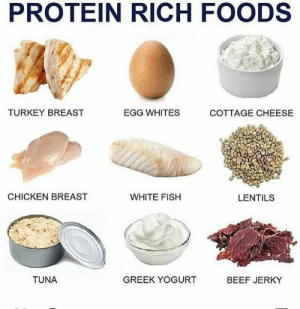 Beef, Protein, and Tumblr: PROTEIN RICH FOODS  TURKEY BREAST  EGG WHITES  COTTAGE CHEESE  CHICKEN BREAST  WHITE FISH  LENTILS  TUNA  GREEK YOGURT  BEEF JERKY kelsisasser:  High protein foods!