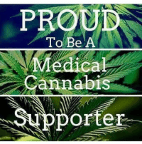 Memes, Cannabis, and 🤖: PROU  To Be A  Medical  Cannabis  orter