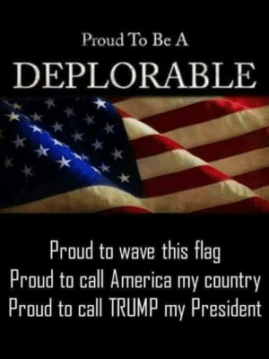America, Friday, and Memes: Proud To Be A  DEPLORABLE  Proud to wave this flag  Proud to call America my country  Proud to call TRUMP my President Happy Friday! And have a great weekend 😎🦅🍔🌭🥓🍕🥩🍻🤛🏼 ~RedHawk~