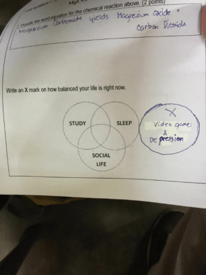 meirl by onelourve FOLLOW 4 MORE MEMES.: Provide the word equation for the chemical reaction above. (2 points)  yicids Magredum xide  Mg  Corbonate  corban Dionde  Magnesium  Write an X mark on how balanced your life is right now.  X  Video game  STUDY  SLEEP  &  De presion  SOCIAL  LIFE meirl by onelourve FOLLOW 4 MORE MEMES.