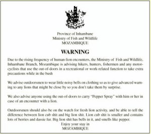 "Warning re: lion - human interactionshttp://omg-humor.tumblr.com: Province of Inhambane  Ministry of Fish and Wildlife  MOZAMBIQUE  WARNING  Due to the rising frequency of human-lion encounters, the Ministry of Fish and Wildlife,  Inhambane Branch, Mozambique is advising hikers, hunters, fishermen and any motor-  cyclists that use the out-of-doors in a recreational or work-related function to take extra  precautions while in the bush  We advise outdoorsmen to wear little noisy bells on clothing so as to give advanced warn-  ing to any lions that might be close by so you don't take them by surprise.  We also advise anyone using the out-of-doors to carry ""Pepper Spray"" with him or her in  case of an encounter with a lion.  Outdoorsmen should also be on the watch for fresh lion activity, and be able to tell the  difference between lion cub shit and big lion shit. Lion cub shit is smaller and contains  lots of berries and dassie fur. Big lion shit has bells in it, and smells like pepper.  Enjoy your stay in  MOZAMBIQUE Warning re: lion - human interactionshttp://omg-humor.tumblr.com"