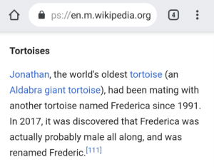 Oh Jonathan 🐢: ps://en.m.wikipedia.org  4  Tortoises  Jonathan, the world's oldest tortoise (an  Aldabra giant tortoise), had been mating with  another tortoise named Frederica since 1991.  In 2017, it was discovered that Frederica was  actually probably male all along, and was  renamed Frederic.111 Oh Jonathan 🐢