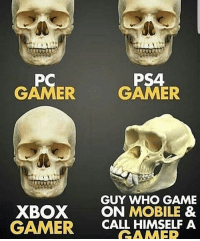 Cute, Lmao, and Love: PS4  GAMER  GAMER  GUY WHO GAME  XBOX ON MOBILE &  GAMER  CALL HIMSELF A Lmao i hope yall arent the bottom right XD 👍Please like this picture,it would mean a lot:)👍 ➖➖➖➖➖➖➖➖➖ 💥Thanks for all the support💥 ➖➖➖➖➖➖➖➖➖ 🔥Love all my followers🔥 〰〰〰〰〰〰〰〰〰 -Tags(ignore) f4f bo3 codmemes cod sfs playstation blackops3 Battlefield1 callofduty infinitewarfare bo2 Microsoft gamer xboxone ps4 ps3 l4l gaming xbox360 Nintendo pc memes funnymemes shooters games love cute gta edgy me