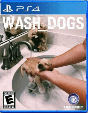 Break for cuteness: PS4  WASH DOGS  T  EVERYONE  CONTENT RATED BY  UBISOFT  ESRB Break for cuteness