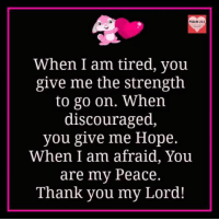 Memes, Thank You, and Hope: PSALM 231  When I am tired, you  give me the strength  to go on. When  discouraged,  you give me Hope.  When I am afraid, You  are my Peace.  Thank you my Lord! The Lord is my Shepherd; I shall not Want. - Psalm23:1 <3