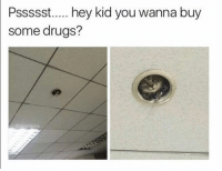 Dank, 🤖, and Kid: Pssssst..... hey kid you wanna buy  some drugs?