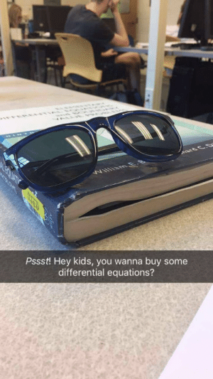Dank, Memes, and Target: Pssst! Hey kids, you wanna buy some  differential equations? calculus is a gateway drug by TheVicePresident MORE MEMES