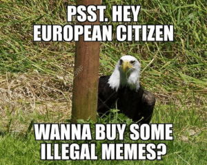 Illegal Memes: PSST, HEY  EUROPEAN CITIZEN  WANNA BUY SOME  ILLEGAL MEMES?