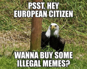 The black market in memes is on the rise! Buy all! by BebopDC MORE MEMES: PSST. HEY  EUROPEAN CITIZEN  WANNA BUY SOME  ILLEGAL MEMES? The black market in memes is on the rise! Buy all! by BebopDC MORE MEMES