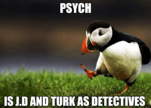 IMO: PSYCH  IS J.D AND TURK AS DETECTIVES IMO