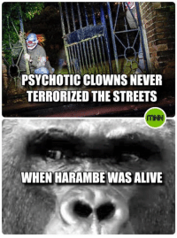 #Dixout: PSYCHOTIC CLOWNS NEVER  TERRORIZED THE STREETS  WHEN HARAMBE WASALIVE #Dixout