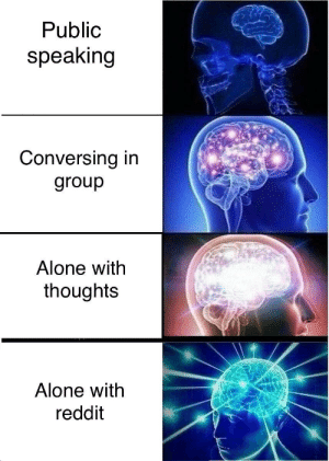 The pinnacle of my being by JM-Rie FOLLOW 4 MORE MEMES.: Public  speaking  Conversing in  group  Alone with  thoughts  Alone with  reddit The pinnacle of my being by JM-Rie FOLLOW 4 MORE MEMES.