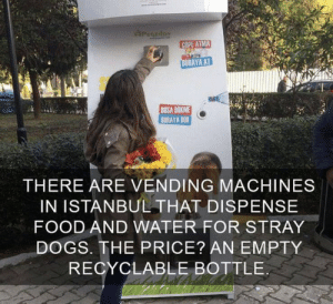Dogs, Food, and Memes: PuCEdoN  COPE ATMA  BURAYA AT  BOSA DOKME  BURAYA DOK  THERE ARE VENDING MACHINES  IN ISTANBUL THAT DISPENSE  FOOD AND WATER FOR STRAY  DOGS. THE PRICE? AN EMPTY  RECYCLABLE BOTTLE https://t.co/UTPOroLWvt