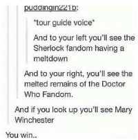 """Memes, 🤖, and The Doctors: pudaingin221p  """"tour guide voice  And to your left you'll see the  Sherlock fandom having a  meltdown  And to your right, you'll see the  melted remains of the Doctor  Who Fandom.  And if you look up you'll see Mary  Winchester  You win Killed it😂😭"""
