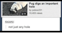 Important holes: Pug digs an important  hole  by pobox231  10,403 views  rocorO  not just any hole Important holes