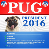 """""""Who are you voting for?"""" https://t.co/s00ohCoJvj: PUG  NOTE  PRESIDENT  2016  Platform  Snuggles  Butt wiggles  Merciless annihilation of all our enemies. To extinguish the last  embers of their once proud cities with the blood of those who  dare question our divine might and authority  Belly rubs """"Who are you voting for?"""" https://t.co/s00ohCoJvj"""