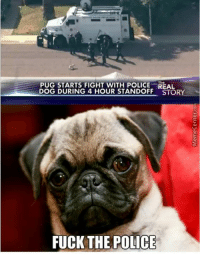 Fuck The Polic: PUG STARTS FIGHT WITH POLICE The  DOG DURING 4 HOUR STANDOFF STORY  FUCK THE POLICE