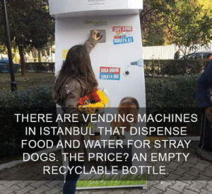 Dogs, Food, and Tumblr: PugEdoN  COPE ATMA  BURAYA AT  BOSA DOKME  BURAYA DOK  THERE ARE VENDING MACHINES  IN ISTANBUL THAT DISPENSE  FOOD AND WATER FOR STRAY  DOGS. THE PRICE? AN EMPTY  RECYCLABLE BOTTLE awesomacious:  Everyone liked that