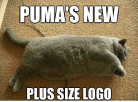 Puma, Logo, and New: PUMA'S NEW  PLUS SIZE LOGO Pumas Plus Size Logo!!!