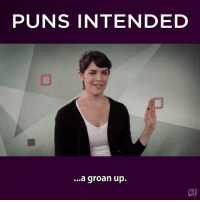 Just because they're punderful.: PUNS INTENDED  ...a groan up. Just because they're punderful.