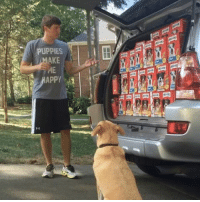 """Driving, Puppies, and Target: PUPPIES  AKE  ME <p><a href=""""http://supremecarlos.net/post/162241122033/theboycourt-valykas-this-is-amazing-ok-but"""" class=""""tumblr_blog"""" target=""""_blank"""">surprisebitch</a>:</p><blockquote> <p><a class=""""tumblr_blog"""" href=""""http://theboycourt.tumblr.com/post/152692079611"""" target=""""_blank"""">theboycourt</a>:</p> <blockquote> <p><a class=""""tumblr_blog"""" href=""""http://valykas.tumblr.com/post/152518699847"""" target=""""_blank"""">valykas</a>:</p> <blockquote> <p>This is amazing</p> </blockquote> <p>Ok but how did they make it look like he was driving</p> </blockquote>  <p>this deserves an academy award nomination</p> </blockquote> <p>cinematic masterpiece</p>"""