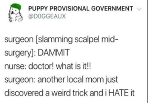 Click, Doctor, and Weird: PUPPY PROVISIONAL GOVERNMENT  @DOGGEAUX  surgeon [slamming scalpel mid-  surgery]: DAMMIT  nurse: doctor! what is it!!  surgeon: another local mom just  discovered a weird trick and i HATE it Click Bait Karen