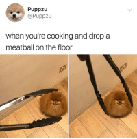 Memes, Best, and 🤖: Puppzu  @Puppzu  when you're cooking and drop a  meatball on the floor Post 1180: meatballing is the best thing that's ever happened to me???