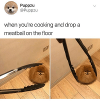 Memes, 🤖, and Hate: Puppzu  @Puppzu  when you're cooking and drop a  meatball on the floor Hate when that happens 😕