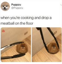 Dump, dump it real good: Puppzu  @Puppzu  when you're cooking and drop a  meatball on the floor Dump, dump it real good