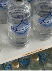 Target, Tumblr, and Blog: pure  en  6o0  ds pure  bure ua  600mL  600mL  DAD'S WATER $2.50  CRUA  OLD STY  C.G  HC.GR  OLD S  01 nichaelforyou:  water sourced from free range dads