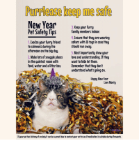 Memes, Anxiety, and Blog: Purrlase keep mesafe  New Year  3. Keep your furry  Pet Safety Tips  family members indoor.  4. Ensure that they are wearing  1. Execise your furry friend collars with ID tags in case they  to calmness during the  should run away.  afternoon on the big day.  5. Most importantly show your  2. Make lots of snuggle places  love and understanding. If they  in the quietest room with  want to hide let them.  food, water and a litter box  Remember that they don't  understand what's going on.  Happy Mew Year  Love Monty  If your pet has history of anxiety it can be agreat idea to contact your vet to see ifmedication is suitable duringfireworks. New Year's Eve is coming up, and it can sometimes be a difficult time for our furry friends. Here are some tips from us to help you and your friends across the animal kingdom get through the noisy celebrations. We have many more tips on MontyBoy.net-blogs-montys-blog 💜 Happy Mew Year and Love, Monty and his humans 😊😸😊 PleaseShare PetSafetyTips newyear mewyear