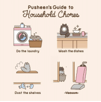 Laundry: Pusheen's Guide to  Do the laundry  Wash the dishes  Dust the shelves