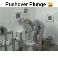 Memes, 🤖, and Pushover: Pushover Plunge